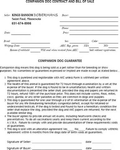 doberman pinscher breeders contract companion dog contract