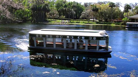 until you loved me a novel silver springs now endangered florida s silver springs once lured