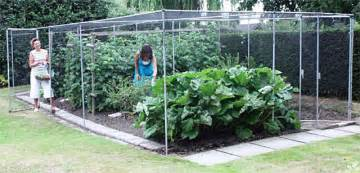 Sandbox Tree Fruit - vegetable garden landscaping and kitchen garden design roger diy vegetable garden cage my