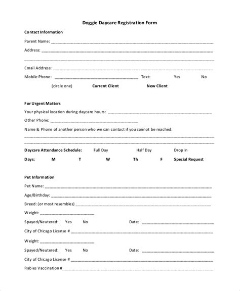 daycare registration form template 10 sle daycare forms sle templates