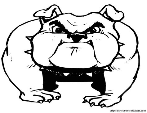 English Bulldog Face Coloring Pages Bulldog Coloring Pages