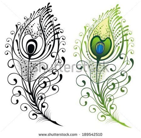 feather tattoo vector 30 best peacock logo ideas images on pinterest peacock