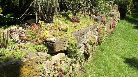 steingarten anlegen und gestalten natur und architektur