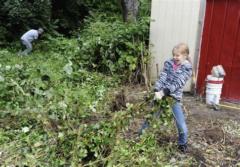 yard cleanup gets boost the columbian