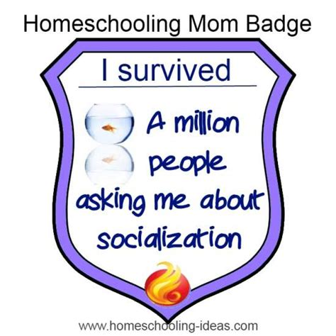 socialize like a homeschooler a humorous handbook for homeschoolers books pin homeschool quotes image search results on
