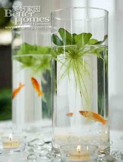 17 best ideas about fish wedding centerpieces on pinterest