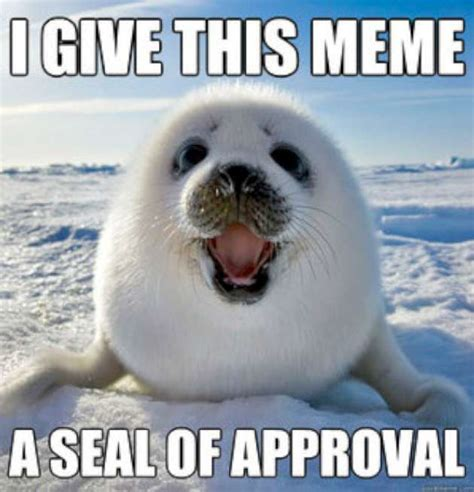 For Seal Meme - meme seal of approval w630