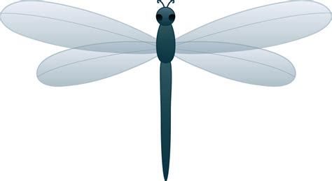 dragonfly clipart dragonfly clipart clipartion