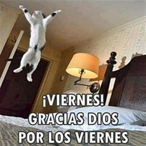 imagenes chistosas hoy viernes 1000 images about 161 viernes on pinterest chistes