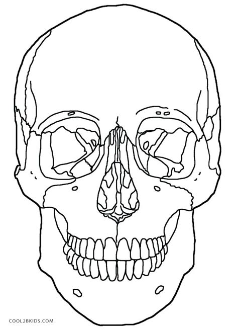 anatomy coloring book table of contents skull bones anatomy coloring pages skull coloring pages
