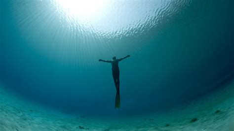 freediving wallpaper 68 images