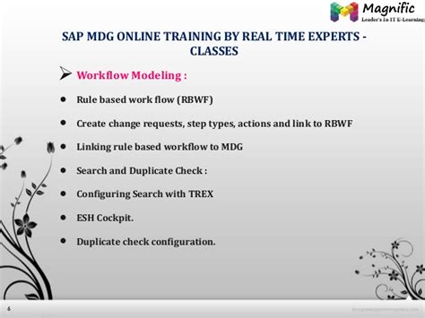 sap trex tutorial sap mdg online training magnifictraining
