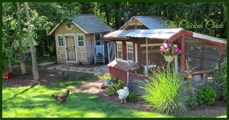 chicken coop bedding the chicken chick 174 chicken coop bedding sand the litter