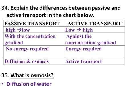 The Difference Between A Passive What Are The Steps Of The Scientific Method Ppt