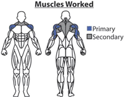 what does a bench press work behind the neck presses shoulder workout