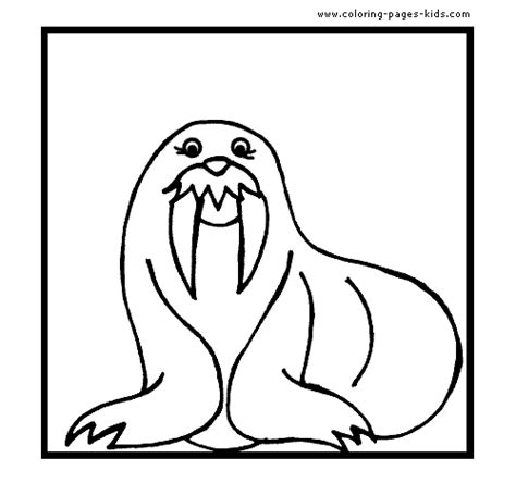 sea lion coloring pages printable sea lion with big teeth color page