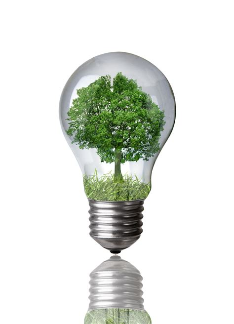 Recycle Led Light Bulbs by Sustainability In Equestrian Events Highlighted At Fei