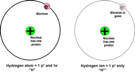 proton donor definition lecture notes for chapter 16 acids and bases