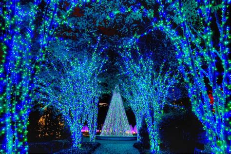 Lights At Botanical Gardens Atlanta With A Southern Twist Living In Today S South 187 Lights At Atlanta Botanical Garden