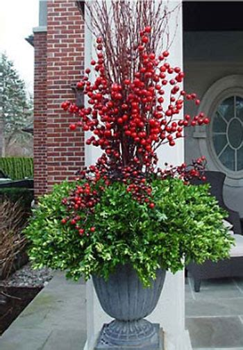 outdoor winter planter ideas camelot design 187 what s dressing up your front porch after the holidays