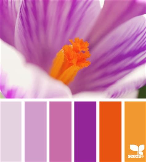 purple and orange color scheme color schemes archives page 2 of 2 mellie blossom