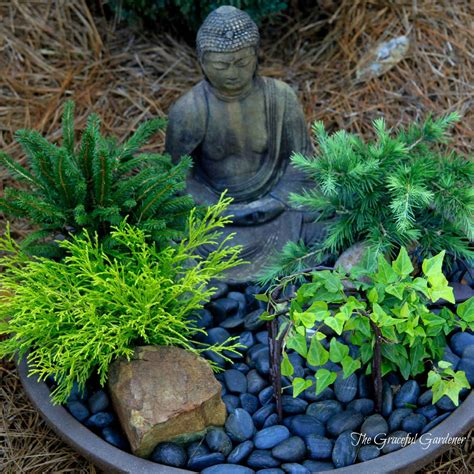 Miniature Rock Garden Japanese Style Mini Rock Garden Gravel Base Growing Shrubs Model 66 Chsbahrain
