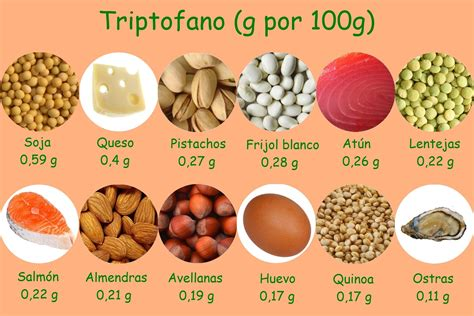 alimentos serotonina tript 243 fano qu 233 es propiedades y alimentos que lo