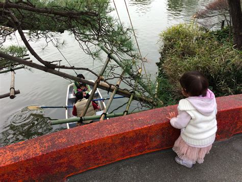 boat ride zoo lake himonya park petting zoo and pony rides gakugeidaigaku