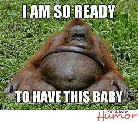 Being Pregnant Meme - best 25 pregnancy memes ideas that you will like on