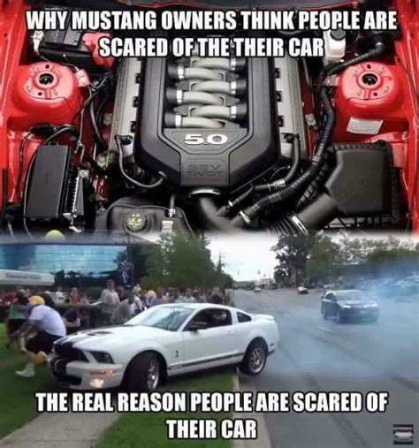30 hilarious mustang memes about their constant crashes