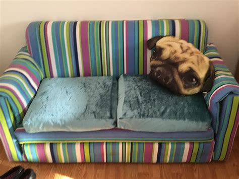 fish tank couch fish tank and couch for sale mums in bahrain