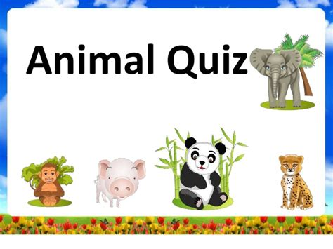 animal quiz animal are you quiz related keywords suggestions