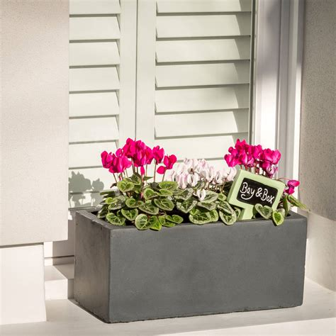 small window box planter small window box planter in hstead lead by bay and box