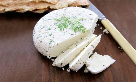 Handmade Cheese - farmer s cheese recipe relish