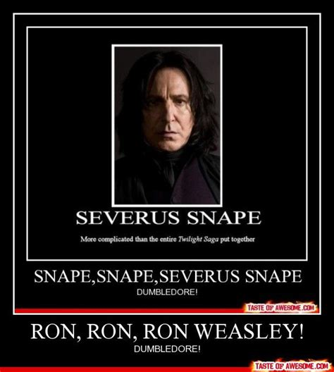 Ron Weasley Meme - 20 best images about harry potter memes on pinterest