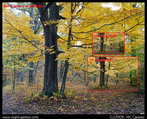 medium format digital digital slr vs medium format updated image comparisons