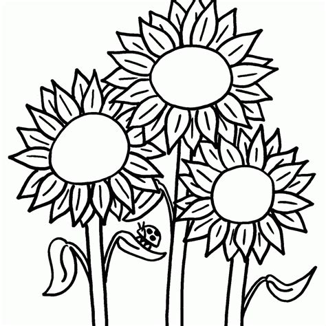 camo free coloring pages on art coloring pages beta clipart clipart panda free clipart images