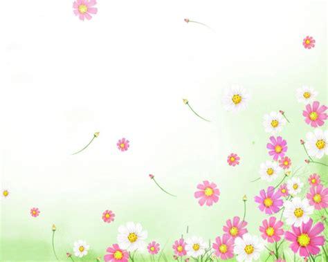 wallpaper bunga portrait h 236 nh nền hoa đẹp cho slide powerpoint phụ nữ đẹp