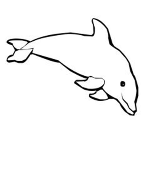 printable dolphin mask snorkeling masks and coloring pages on pinterest