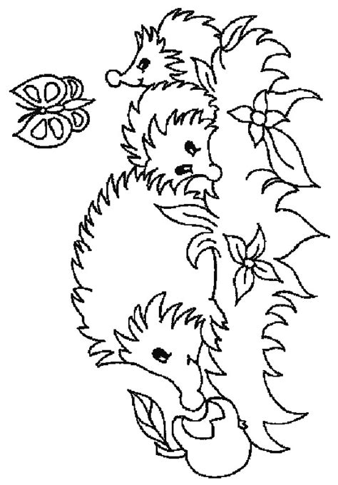 coloring page of a hedgehog kids n fun com 32 coloring pages of hedgehogs