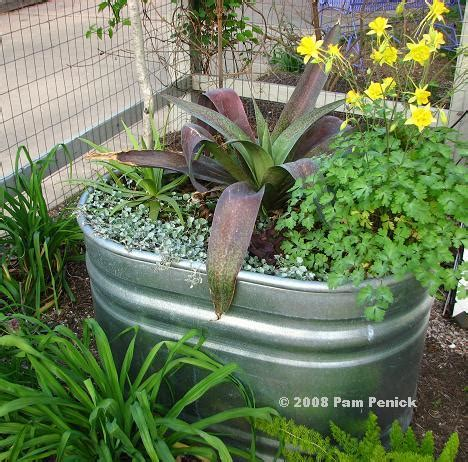 Water Trough Planters by Take Stock Of Stock Tank Planters Diggingdigging