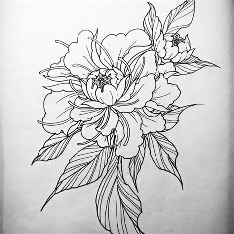 flower tattoo outline designs 15 peony designs and ideas
