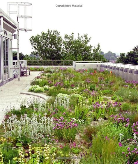 Planting A New Perspective 101 best images about tuin on gardens