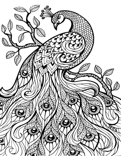 pretty coloring pages for adults 187 coloring pages kids for
