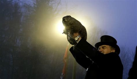 groundhog day yearly results groundhog day 2017 punxsutawney phil live