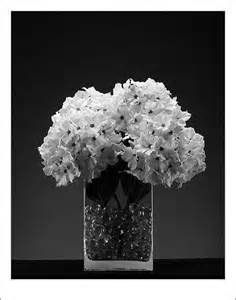 black and white flower centerpieces my wedding 187 black and white floral arrangements