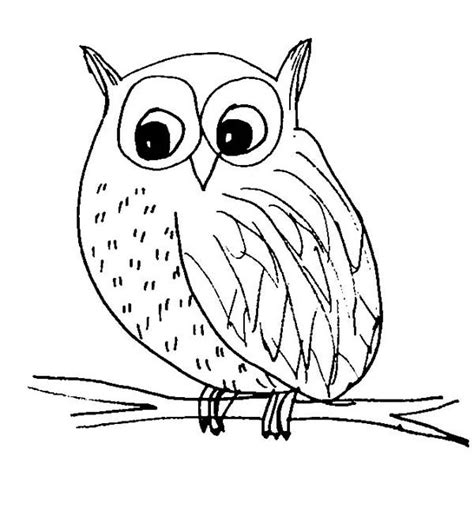 Snow Dogs Coloring Pages Snow Owl Coloring
