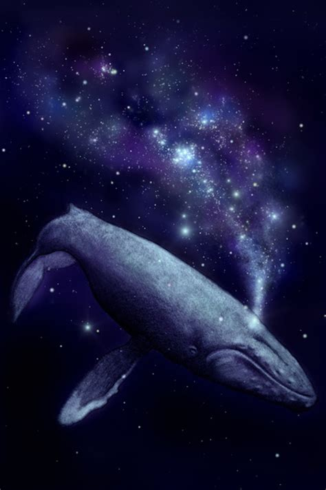 the serendipity of the space whale nomansskythegame