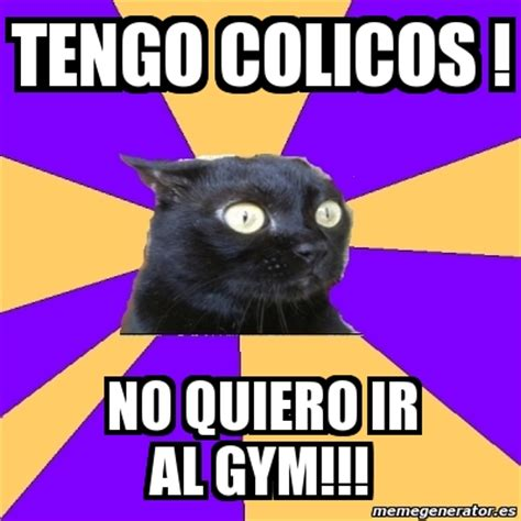 Cat Gym Meme - cat gym meme 28 images cat gym meme 28 images the