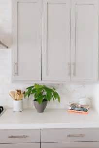 Grey Kitchen Cabinets With White Countertops - grey kitchen cabinets with caesarstone organic white counters transitional kitchen